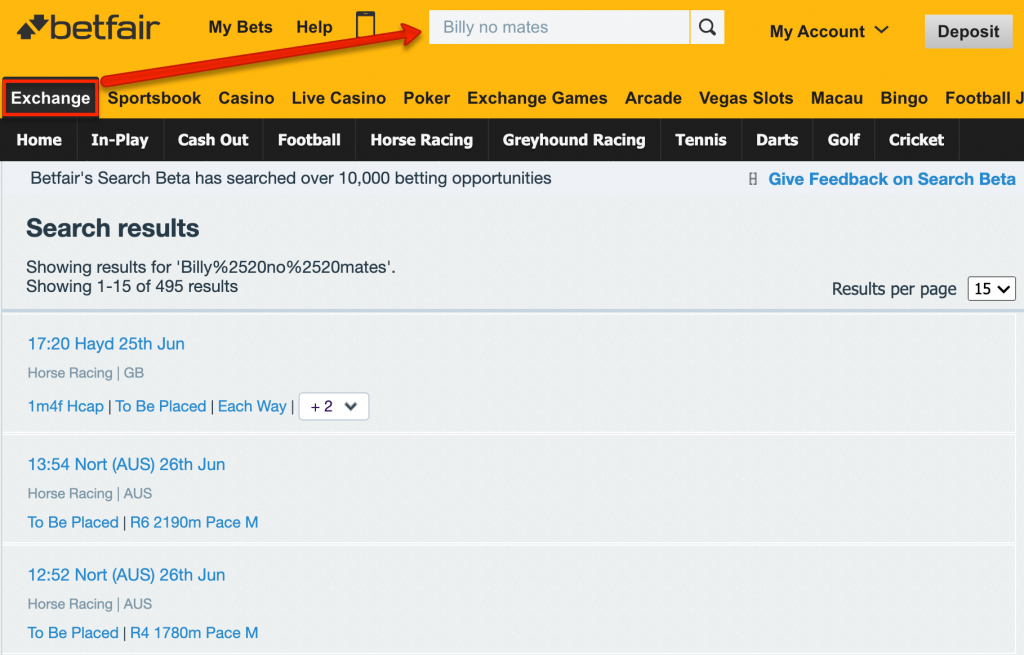 how to search for lay bets